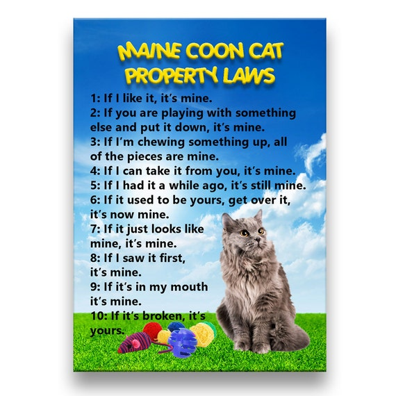 Maine Coon Cat Property Laws Fridge Magnet No 5