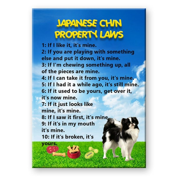 Japanese Chin Property Laws Fridge Magnet
