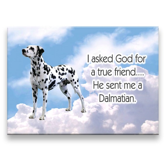 Dalmatian True Friend Fridge Magnet