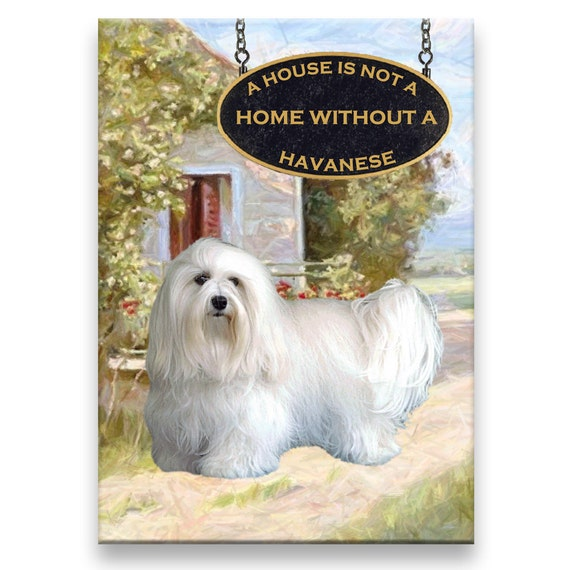 Havanese a House is Not a Home Fridge Magnet No 1