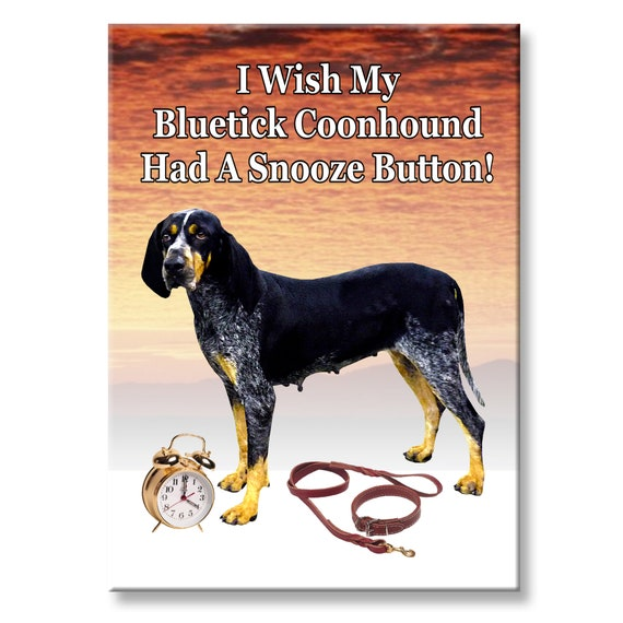 Bluetick Coonhound Snooze Alarm Fridge Magnet No 2