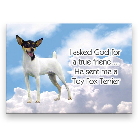 Toy Fox Terrier Tue Friend Fridge Magnet