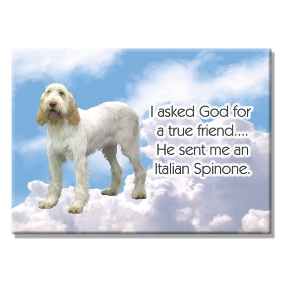Italian Spinone True Friend Fridge Magnet No 1