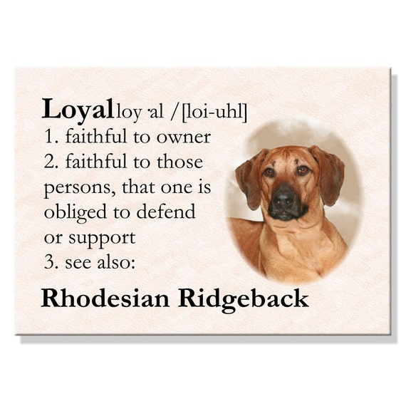 Rhodesian Ridgeback Dictionary Loyal Fridge Magnet