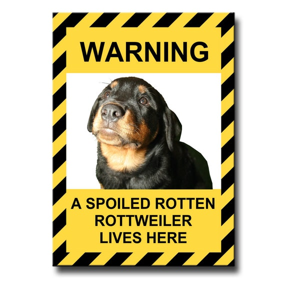 Rottweiler Spoiled Rotten Fridge Magnet No 1