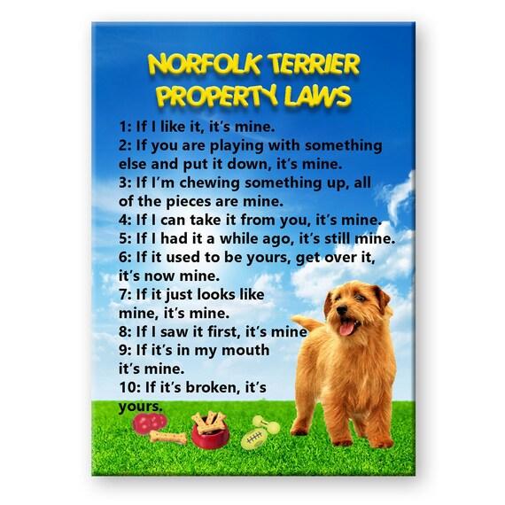 Norfolk Terrier Property Laws Fridge Magnet