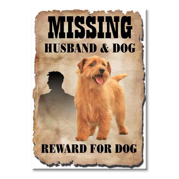Norfolk Terrier Husband Missing Reward Fridge Magnet