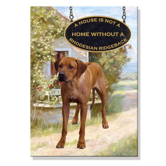 Rhodesian Ridgeback a House is Not a Home Fridge Magnet