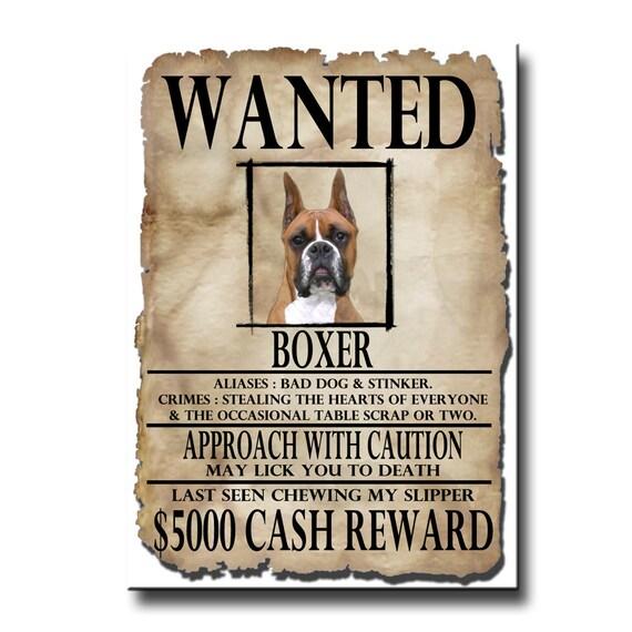 Boxer Wanted Poster Fridge Magnet