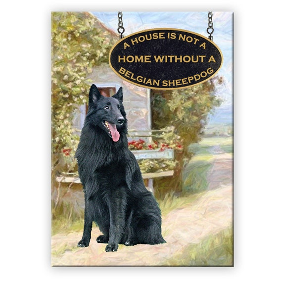Belgian Sheepdog a House is Not a Home Fridge Magnet