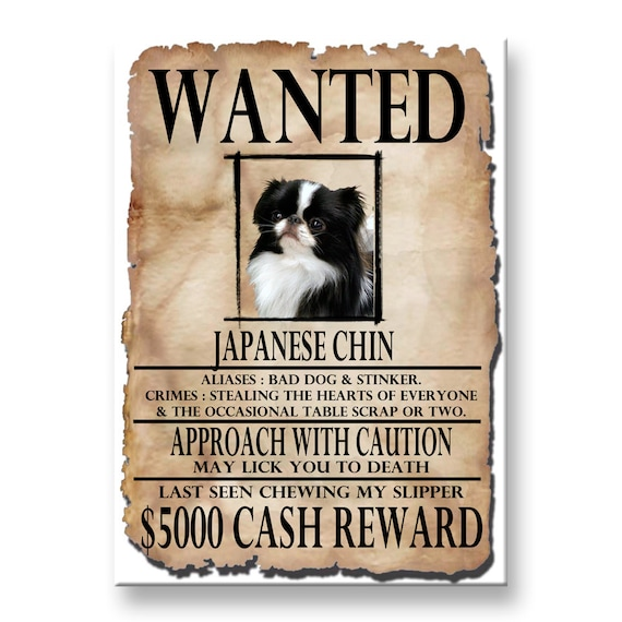Japanese Chin Wanted Poster Fridge Magnet