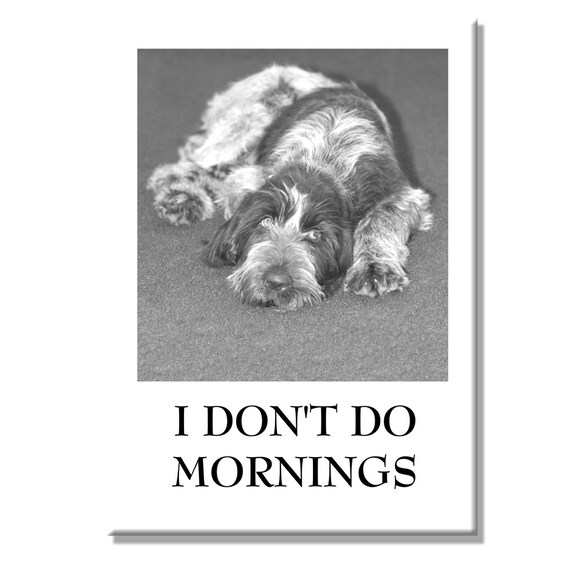 Italian Spinone I Don't Do Mornings Fridge Magnet