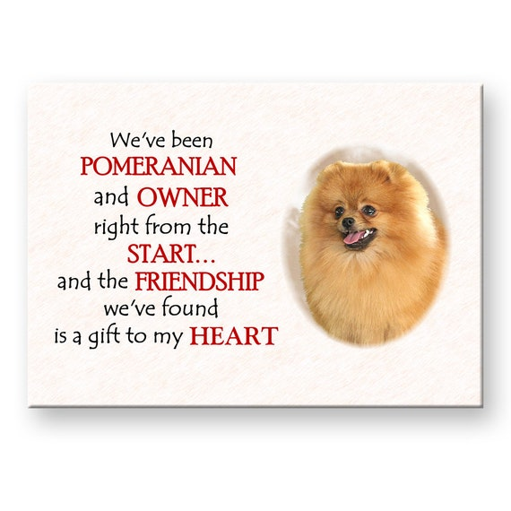Pomeranian Friendship Fridge Magnet