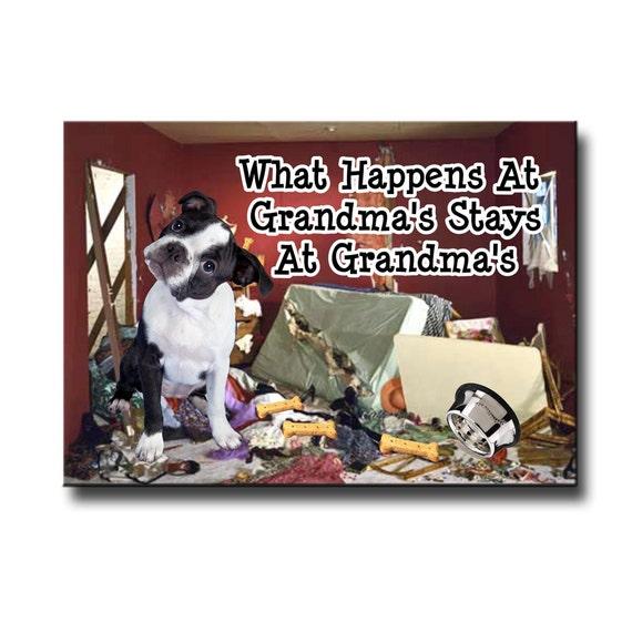 Boston Terrier What Happens at Grandmas Fridge Magnet No 3