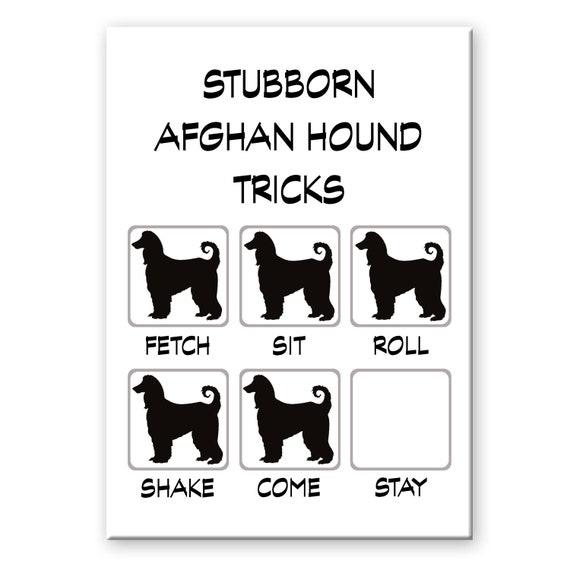 Afghan Hound Stubborn Tricks Fridge Magnet