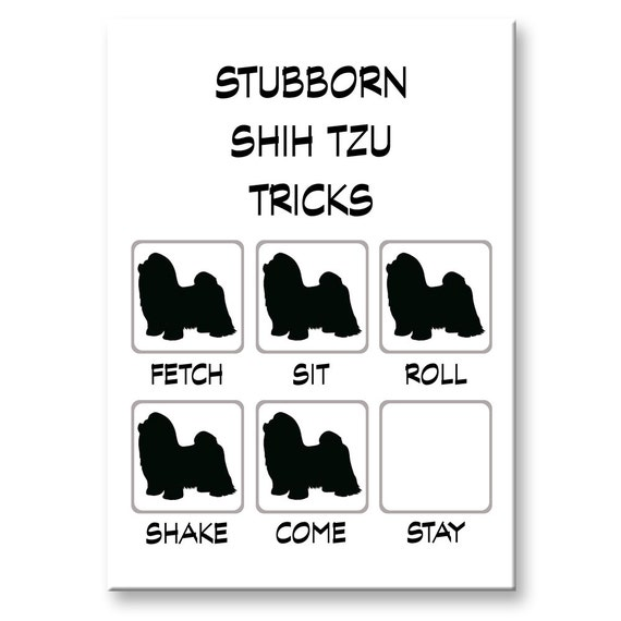 Shih Tzu Stubborn Tricks Fridge Magnet