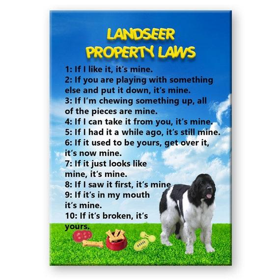 Landseer Property Laws Fridge Magnet