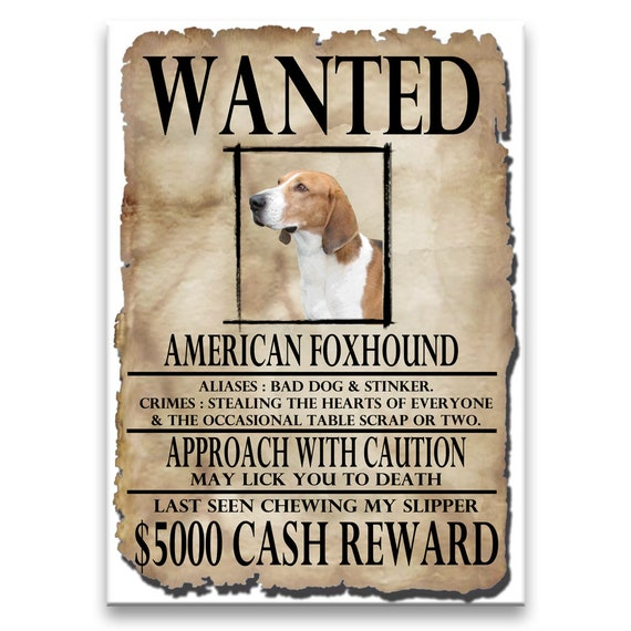 American Foxhound Wanted Poster Fridge Magnet