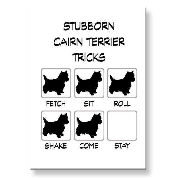 Cairn Terrier Stubborn Tricks Funny Fridge Magnet