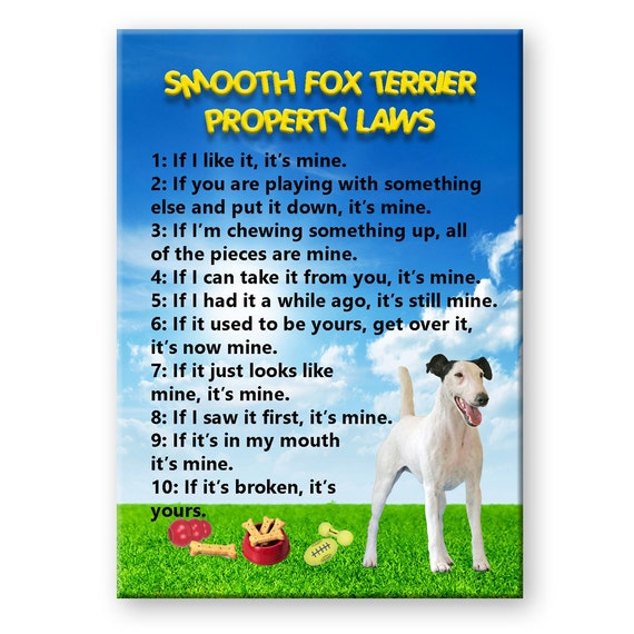 Smooth Fox Terrier Property Laws Fridge Magnet