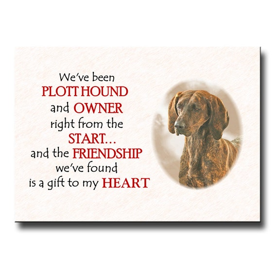 Plott Hound Friendship Fridge Magnet