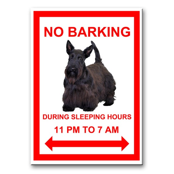 Scottish Terrier No Barking Fridge Magnet