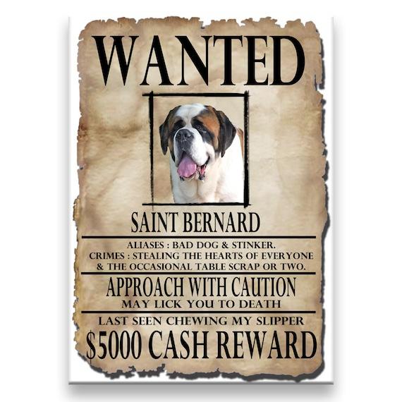 Saint Bernard Wanted Poster Fridge Magnet