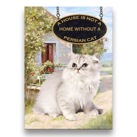Persian Cat a House is Not a Home Fridge Magnet No 1