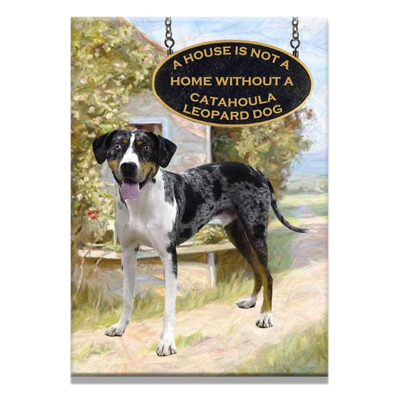 Catahoula Leopard Dog a House is Not a Home Fridge Magnet