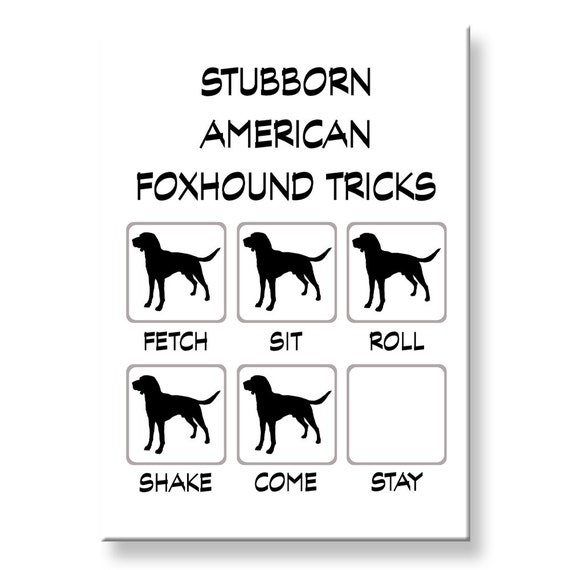 American Foxhound Stubborn Tricks Fridge Magnet