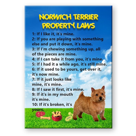 Norwich Terrier Property Laws Fridge Magnet No 1