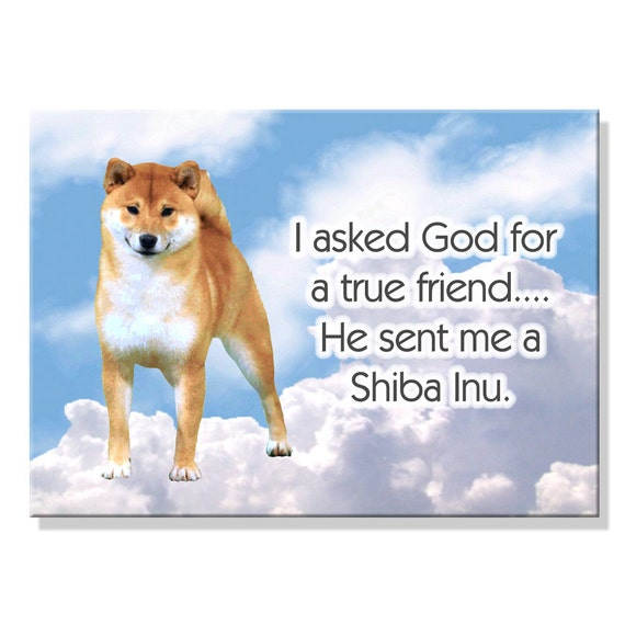 Shiba Inu True Friend Fridge Magnet No 1