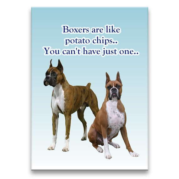 Boxer Can't Have Just One Fridge Magnet