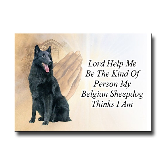 Belgian Sheepdog Lord Help Me Be Fridge Magnet