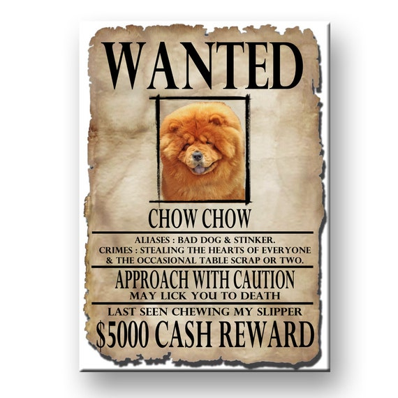 Chow Chow Wanted Poster Fridge Magnet