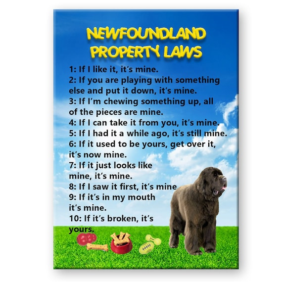 Newfoundland Property Laws Fridge Magnet No 1 Brown