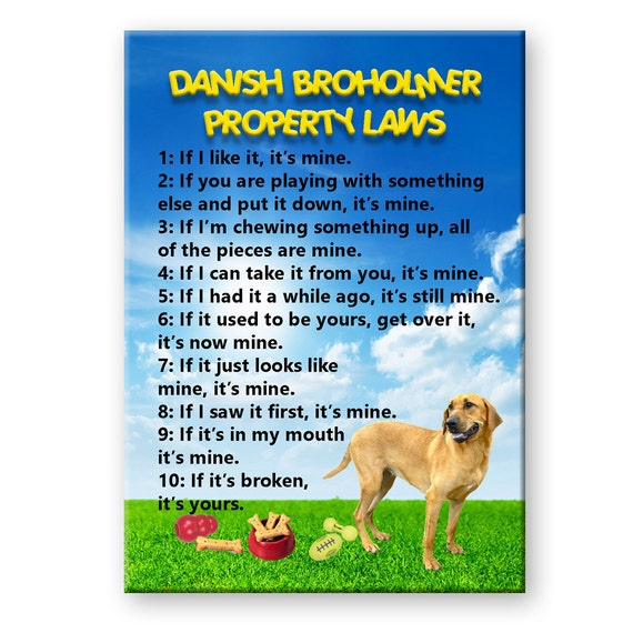 Danish Broholmer Property Laws Fridge Magnet