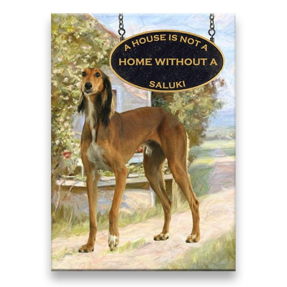 Saluki a House is Not a Home Fridge Magnet