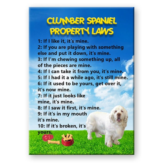 Clumber Spaniel Property Laws Fridge Magnet