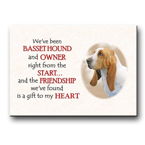 Basset Hound Friendship Fridge Magnet No 1