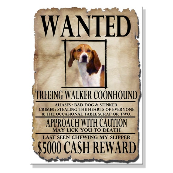 Treeing Walker Coonhound Wanted Poster Fridge Magnet