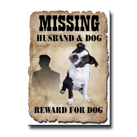 Boston Terrier Husband Missing Reward Fridge Magnet No 3 Puppy