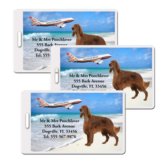Irish Setter Set of 3 Personalized Luggage Tags