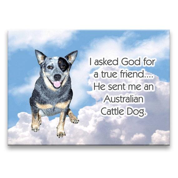 Australian Cattle Dog True Friend Fridge Magnet