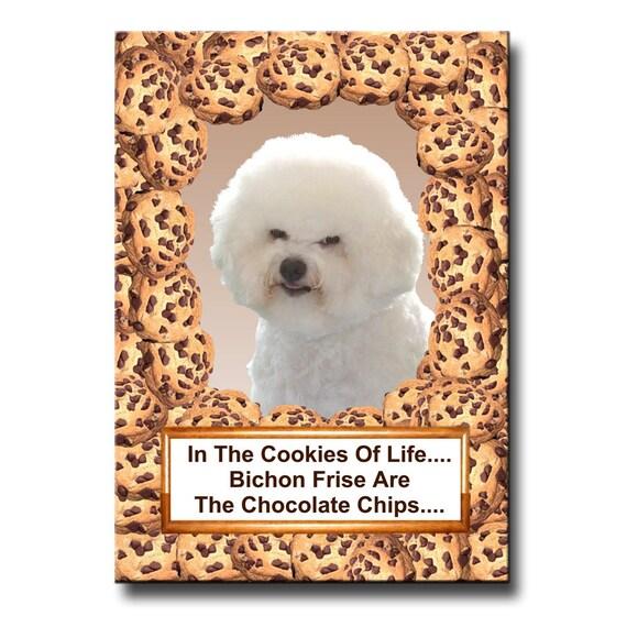 Bichon Frise Chocolate Chip Cookie Fridge Magnet