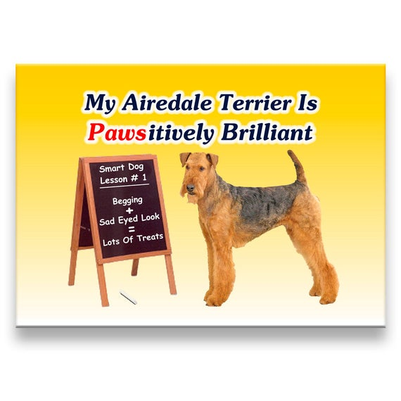 Airedale Terrier Pawsitively Brilliant Fridge Magnet