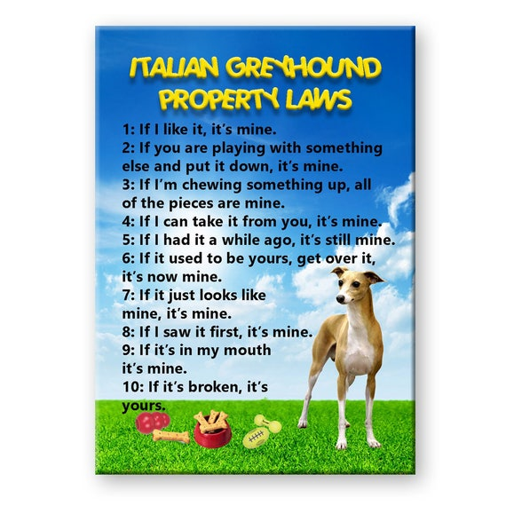Italian Greyhound Property Laws Fridge Magnet
