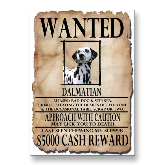 Dalmatian Wanted Poster Fridge Magnet