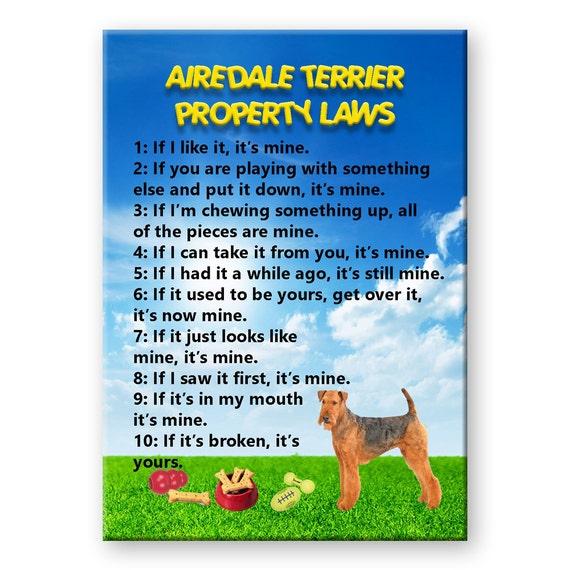 Afghan Hound Property Laws Fridge Magnet