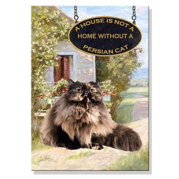 Persian Cat a House is Not a Home Fridge Magnet No 3